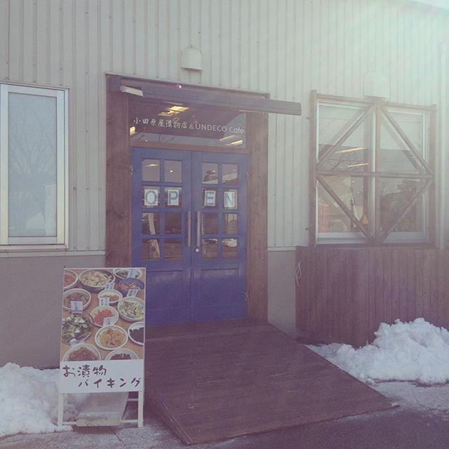 本日、アンデコのバイキングは11:00〜14:00(L.O)となります。そして、明日はアンデコ、おだわら屋共に臨時休業とさせていただきます。#アンデコ#レストラン#ランチ#fukushima#kooriyama #undeco#小田原屋漬物店#小田原屋#お漬物バイキング#漬物#お漬物#つけもの#おつけもの#和食#japanesetraditionalfood#otsukemono#food#japanese#baiking#japanesefood#おだわら屋#からあげ#臨時休業